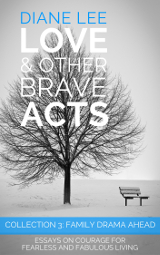Collection 3: Family Drama Ahead - Love & Other Brave Acts Book