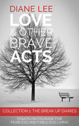 Collection 1: The Break Up Diaries - Love & Other Brave Acts Book