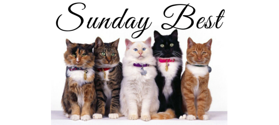 Sunday Best – My Best Posts of 2015