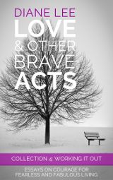 Collection 4: Working It Out of the Love & Other Brave Acts (Essays on Courage for Fearless and Fabulous Living) series is all about work, workplaces and organisational culture.
