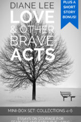 Collections 4-6: Love & Other Brave Acts Book Anthology